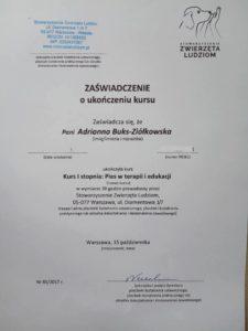 Dogoterapia-certyfikat